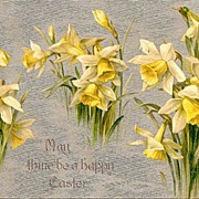 Winsch Easter Silver Postcard With Daffodils in Excellent Condition