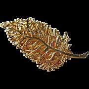 Coro Stylized Leaf Pin Gold-tone
