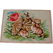 Vintage Advertising Card / Rabbits in Basket / Trade Card / Collectible Trade Card / Vintage .