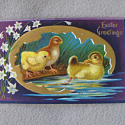 Early 1900's Easter Chicks  Duck Postcard