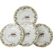 SOLD Haviland Limoges Arcadia Parrot Bread Plates