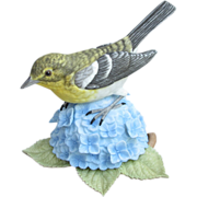Lenox Porcelain Yellow-throated Vireo
