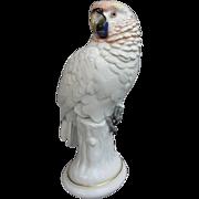 SOLD Rosenthal Life Sized Parrot Figurine  Karner