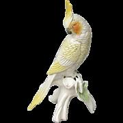 SOLD ENS Germany Cockatiel Figurine
