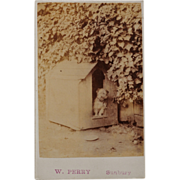 SALE CDV Photograph ~ Sweet Terrier In Dog House