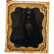 SALE Antique Dog Tintype Photograph