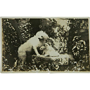 SALE Antique AZO RPPC Dog & Pups Postcard