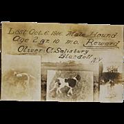 """Antique Dog Postcard ~ """"Lost Hound"""""""
