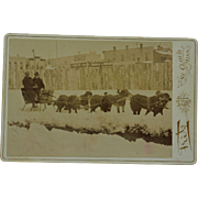 Antique Cabinet Photograph ~ Newfoundland Dogs Pulling Sled
