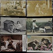 SOLD 8 Antique Dog Postcards