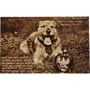 SOLD WW1 Postcard ~ Major Richardson's Sentry Dog