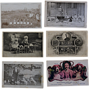 SOLD 6 Antique Postcards C1907 ~ Performing Circus Dogs - Red Tag Sale Item