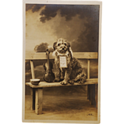 SALE Antique RPPC French Dog With Violin Postcard C1912