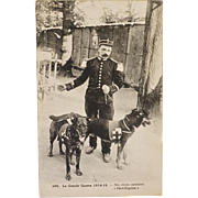 SOLD WW1 French Postcard ~ Red Cross Dogs