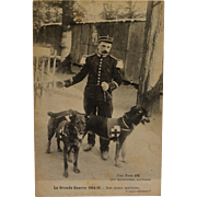 SALE French WW1 Postcard ~ Red Cross Dogs