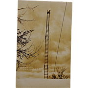 SALE Antique RPPC Postcard ~ C.A. Wright's High Diving Dog