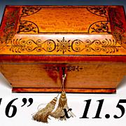 "SOLD Huge 16"" Antique French Marriage Box, Chest, Casket, c.1700s, Cut Steel Pique"