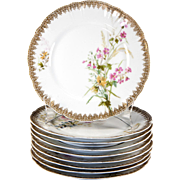 SALE Set of 9 Hand Painted Haviland Limoges Plates, Date Mark: 1888-1896, 8.5 ...
