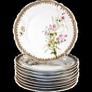 SALE Set of 9 Hand Painted Haviland Limoges Plates, Date Mark: 1888-1896, 8.5 ...