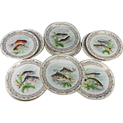 SALE Antique to Vintage Haviland Limoges Set of 11 Transfer & Painted Fish Plates, 8.5""