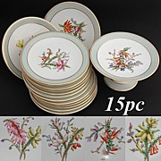 SALE Gorgeous Antique 15pc Porcelain Fruit or Dessert Service: Hand Painted Bell Flowers, Thre