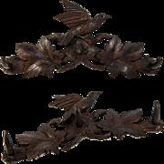 """SALE Antique Hand Carved Black Forest 16.5"""" Crop or Hat Rack, Bird and Oak ..."""