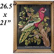 SALE Antique Victorian Needlepoint Sampler, Tapestry, A Parrot, c.1872, Signed & in Frame