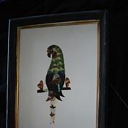SALE Vintage Folk Art Butterfly Wing Parrot