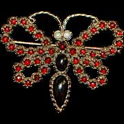 Victorian Bohemian Garnet 800 Silver Butterfly Brooch - 1890