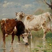 """""""Cattle in the Stream"""" Henry Schouten"""