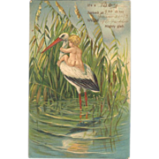 Embossed Birth Announcement Postcard - Baby and Stork
