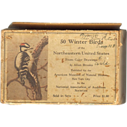 Audubon Bird Cards - Fifty Winter Birds of the Northeastern  United States