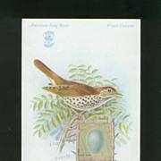 Singer Sewing Machine Advertising Card - Wood Thrush