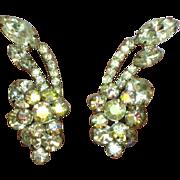 Juliana D&E Clear and A/B Rhinestone Elegant Vintage Clip Earrings