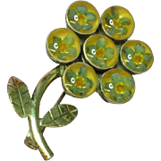 Straw Flowers Embedded in Lucite Sterling Silver Pin Brooch