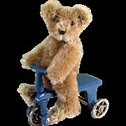 "3 1/2"" Steiff Original Teddy Bear with Kilgore Trike"