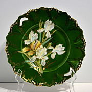Early RS Prussia Serving Dish with Hand-Painted Irises – R.S. Prussia Schlegelmilch