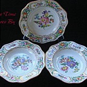 Carl Thieme Dresden Saxony, Floral Porcelain Soup Plate