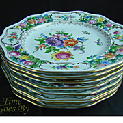 SALE Set of 8 Hand Painted and Reticulated Dresden Flower DInner Plates - Thieme