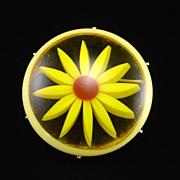 SALE Unique Vintage Cased Lucite Daisy Brooch Pin