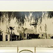 AZO Real Photo Post Card of Gay's Lion Farm El Monte, California