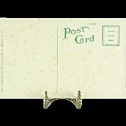 The Island Curio Co. Vintage Hawaiian Territory Post Card Surfing