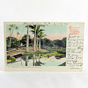 Honolulu Territory of Hawaii Undivided Private Mailing Card 1906