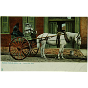 New Orleans Creole Milk Maid by Raphael Tuck & Sons Chromolithograph