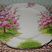 SOLD Royal Albert - Blossom Time - Dinner Plates (4)