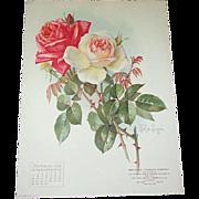 SOLD Oct 1906 Paul de Longpre Calendar Page Pink Roses