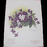 SOLD 1906 March Paul de Longpre Calendar Page Purple & White Violets