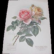 SOLD 1906 July Paul de Longpre Calendar Page Pink Roses