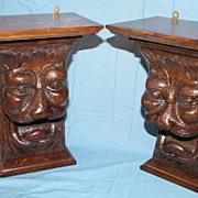 Pair of Carved Lion Oak shelves