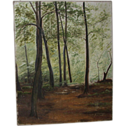 REDUCED Original Oil On Canvas - Fine Woodland View In Summer